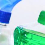 Tisztítás-technológiai szolgáltatásvezető tanfolyam