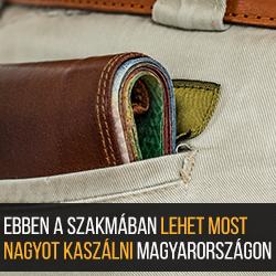 Ebben a szakmában lehet most nagyot kaszálni Magyarországon